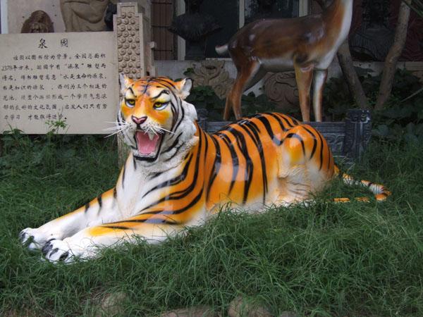 壁纸 动物 虎 老虎 桌面 600_450
